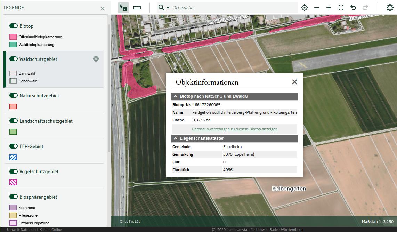 Screenshot der Offenlandbiotopkartierung